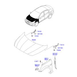 Крыло переднее левое Hyundai Solaris (2010-н.в.)
